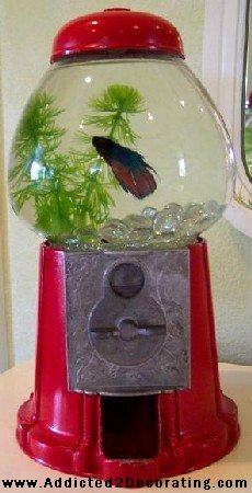 Gumball Machine Fish Bowl, learn how to make this yourself!