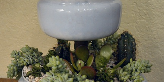 Create a two-tiered table top succulent planter from two upcycled glass light globes